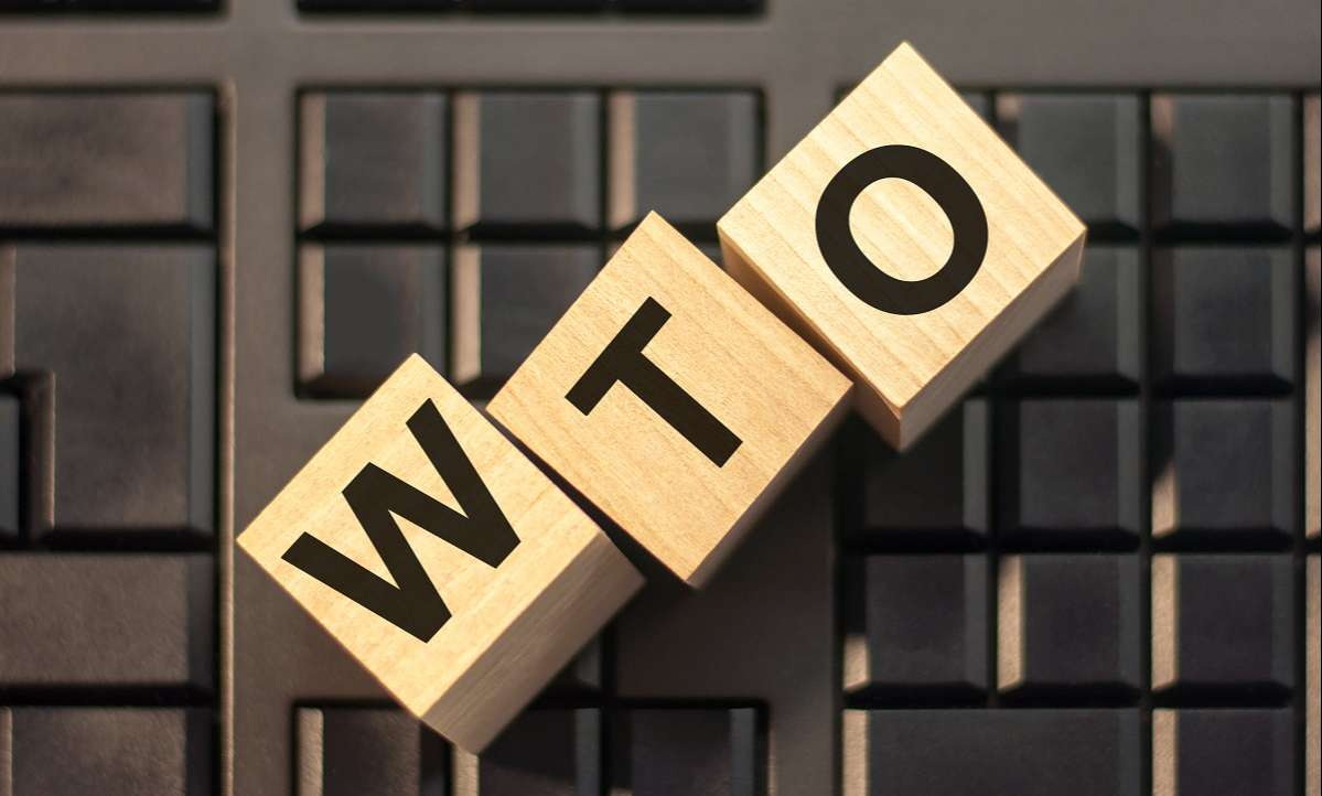 How Does Dispute Settlement Mechanism of WTO Work