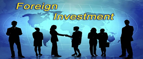 Foreign investment in us llc mesk investment 1728 org